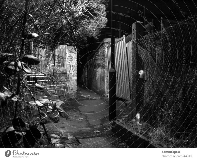 Street Dark Sadness Lanes & trails Fear Dirty Stairs Gloomy Trash Lantern Handrail Panic Concern Alley Shopping Trolley
