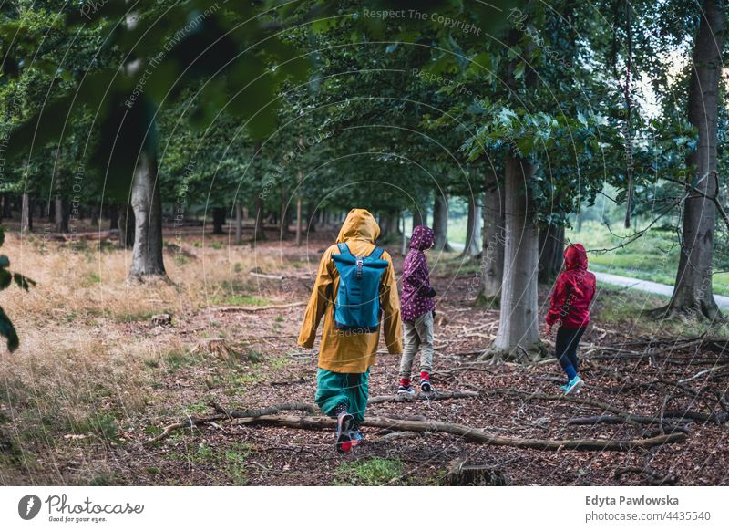 Parent and children walking in the forest Drents-Friese Wold hike hiking rain raincoat autumn vacation travel active adventure summertime day freedom holiday