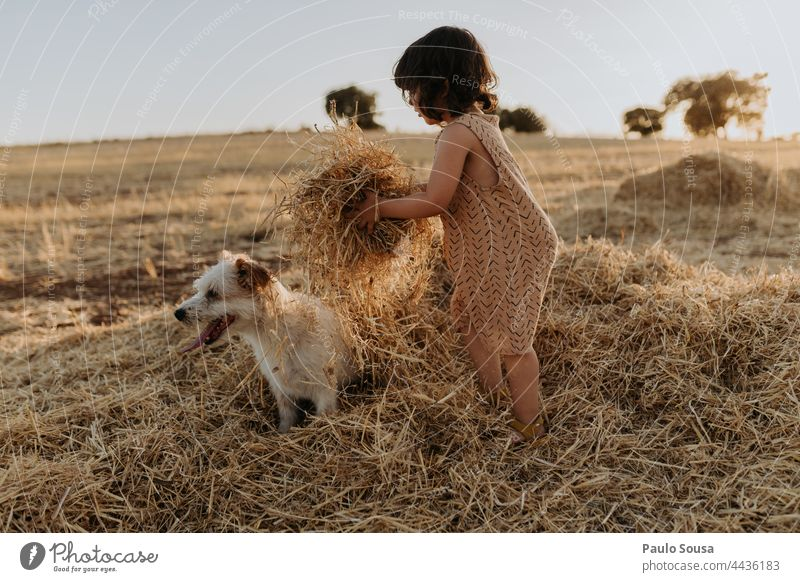 Cute girl playing in the fields with dog Child childhood Girl 1 - 3 years Caucasian Authentic Pet Dog Together togetherness Colour photo Happiness Life