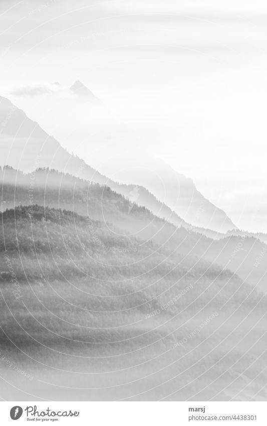 Haze fields in front of the mountains Mountain Peak Calm Relaxation Alps Meditation Nature Landscape Light Illuminate Freedom Harmonious Morning Dream Elements