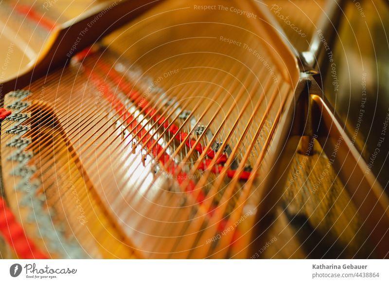Blick in einen Flügel ensemble flügel kammermusikfestival klavier musikprobe piano saiten musikinstrument keyboard