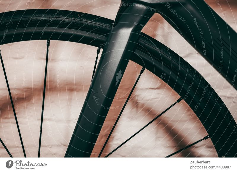 Fork and front wheel of a road bike in front of wall Racing cycle Front wheel Wheel rim Spokes Carbon Dark gray Wall (building) Sports Bicycle Cycling Driving