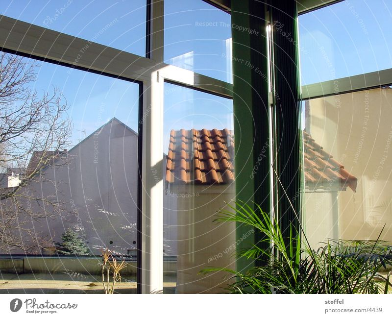 Lost palmas Window House (Residential Structure) Roof Architecture