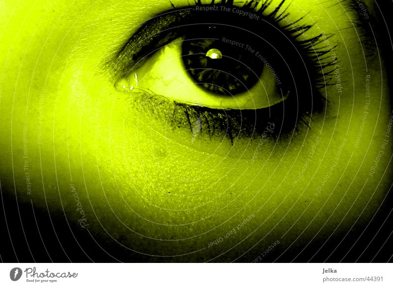 Woman Green Face Adults Yellow Eyes Eyelash Pupil Greeny-yellow