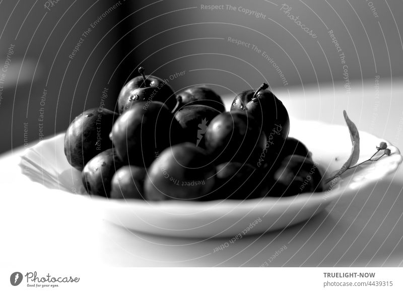 Plums in black and white. Actually they are blue. Background white gray. fruit Stone fruit Fresh Harvest organic salubriously vitamins Plate Full White Table
