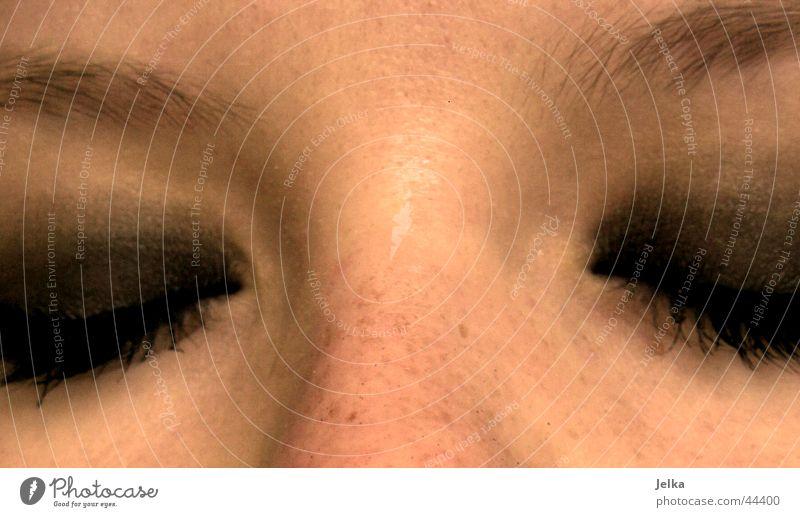 Woman Face Adults Eyes Nose Sleep Eyelash Eyebrow Mascara Doze Eye shadow Nasal bone