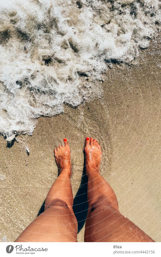 Women's feet on the beach washed by sea water. Holiday mood. vacation Beach Ocean wave Woman Sand Summer Barefoot Water Sandy beach Summer vacation Sea water