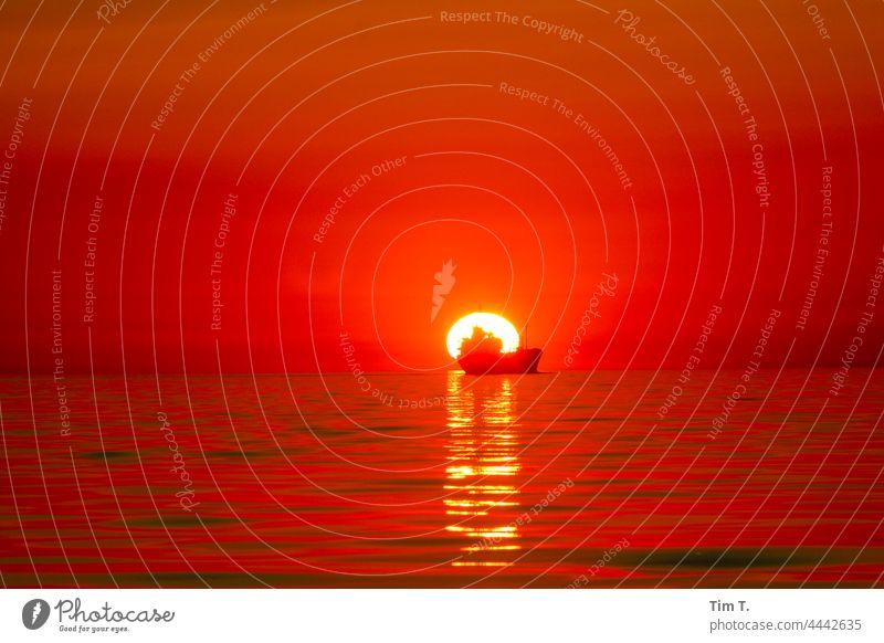 a merchant ship sails straight into the sunset seafaring Baltic Sea Sunset Sunlight Ocean Horizon Water Waves waves Sky Nature water seaside sky Lake Seafaring,