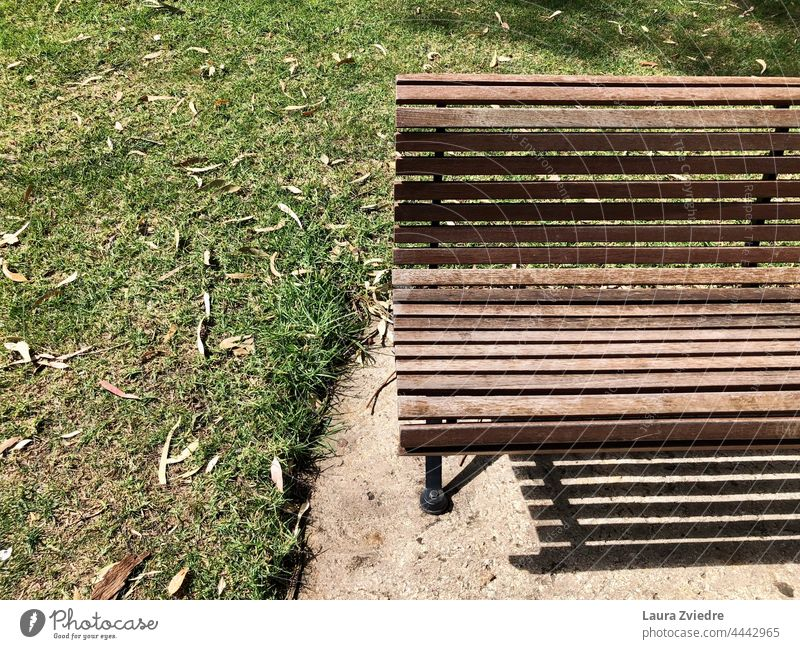 Summer day in the park and bench for a little rest Bench Wooden bench Old bench Park bench Seating Bench in the park Grass Break Sit down Relaxation Nature Calm