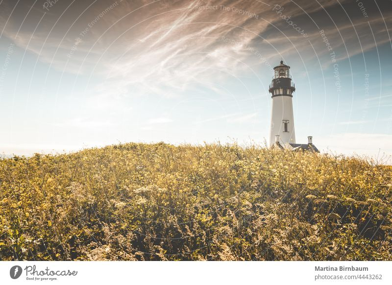 The historic Yaquina Head Lighthouse, Newport Oregon USA newport yaquina head pacific northwest oregon coast yaquina head lighthouse landscape travel guidance