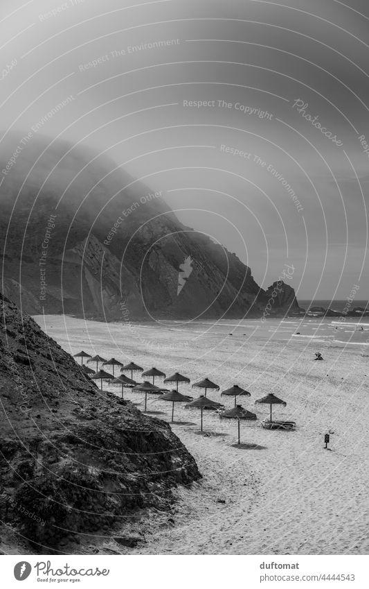 Bast sunshades on the beach in black white Beach Sunshade black and white Monochrome Ocean Fog breeze ocean Vacation & Travel Sand Cliff coast Landscape Smooth