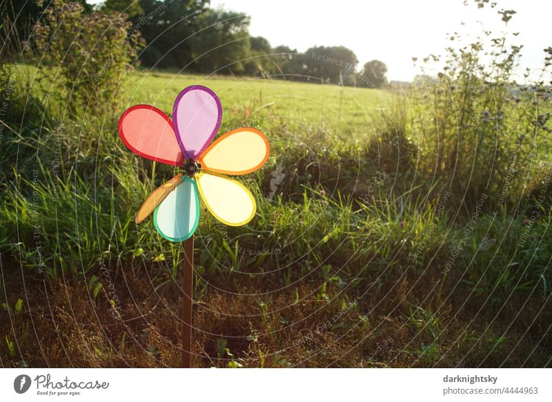 Colorful small windmill in front of a green meadow with backlight, toy as a metaphor Pinwheel wind power ecology Environment renewable energies Joy Nature