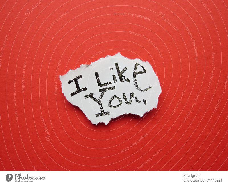 I like you. Like Friendship Sympathy Love Emotions Together Joie de vivre (Vitality) Relationship Trust Safety (feeling of) Happy Spring fever Colour photo Joy