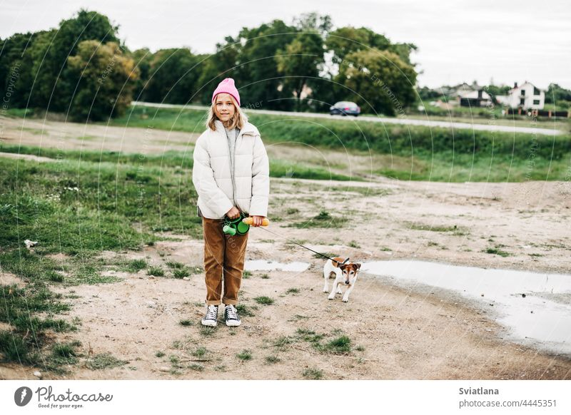 Cute teenage girl walking her dog Jack Russell Terrier on a leash in a field against a background of a cornfield in autumn teenager feed terrier childhood pet