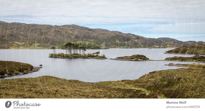 lost landscape Vacation & Travel Trip Adventure Freedom Hiking Nature Landscape Hill Island Lake Hole Assynt Great Britain Scotland Europe Calm Colour photo