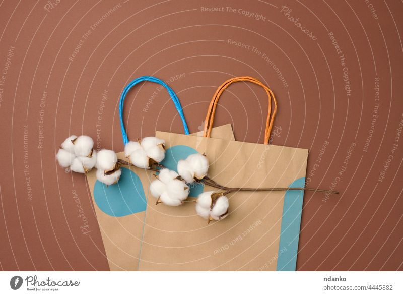 paper bag and a branch with cotton flowers on a light brown background, zero waste agriculture ball beige bloom blossom boll botany bud composition cultivated