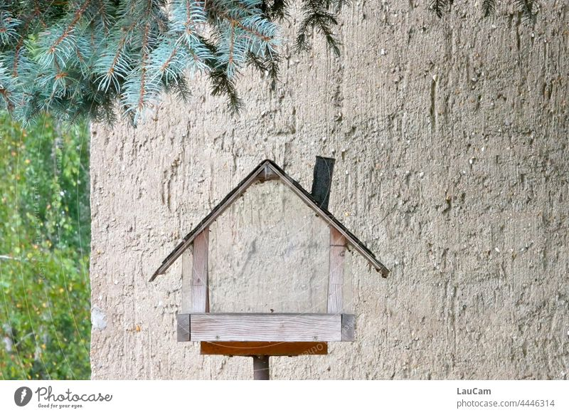 Vacancy - all have flown out House (Residential Structure) empty house Abandoned house abandoned building bird house aviary Flat (apartment) House location