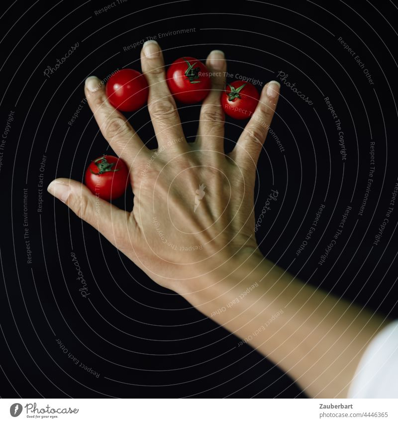 Hand with four small red tomatoes against black background Fingers Red Black arm Art Vegetable Fresh Tomato Food Nutrition naturally Vegetarian diet Diet Splay