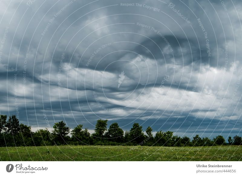Sky Nature Green Tree Landscape Clouds Forest Dark Meadow Autumn Grass Gray Rain Field Threat Soft