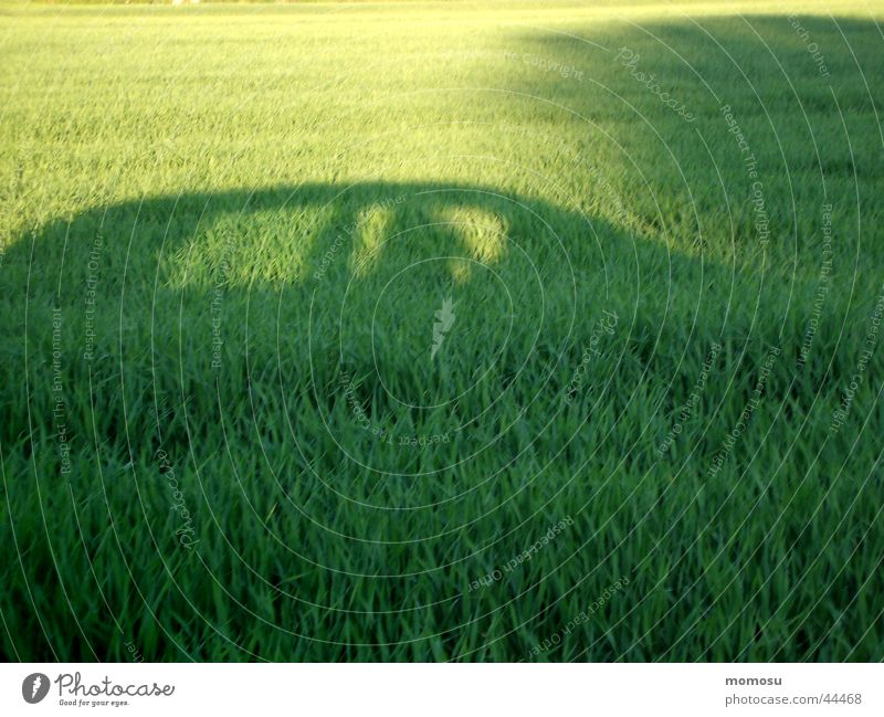 Green Meadow Car Field Transport Mobility Vehicle Shadow