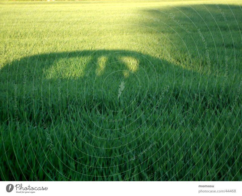meadowhopper Meadow Field Vehicle Mobility Green Transport Car Shadow