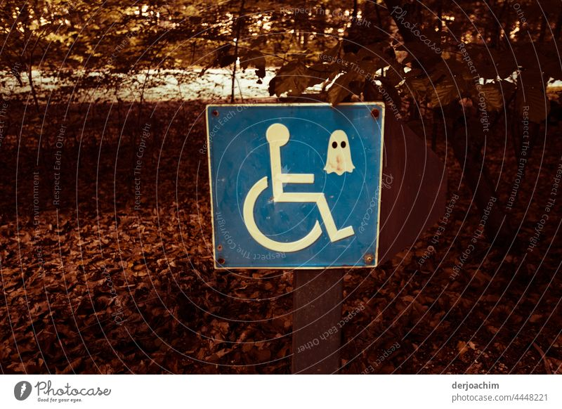 Mysterious ghost masks for wheelchair users Wheelchair Colour photo Deserted Exterior shot Handicapped Disability friendly Signs and labeling Parking lot Day
