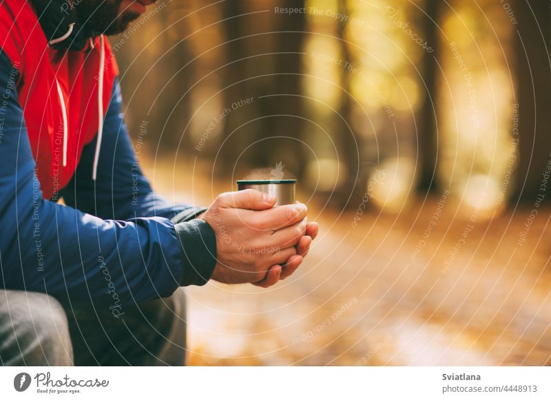 Close-up of a man's hands with a cup of hot drink in an autumn park or forest tea bench coffee fall traveler outdoor handsome casual nature person male season