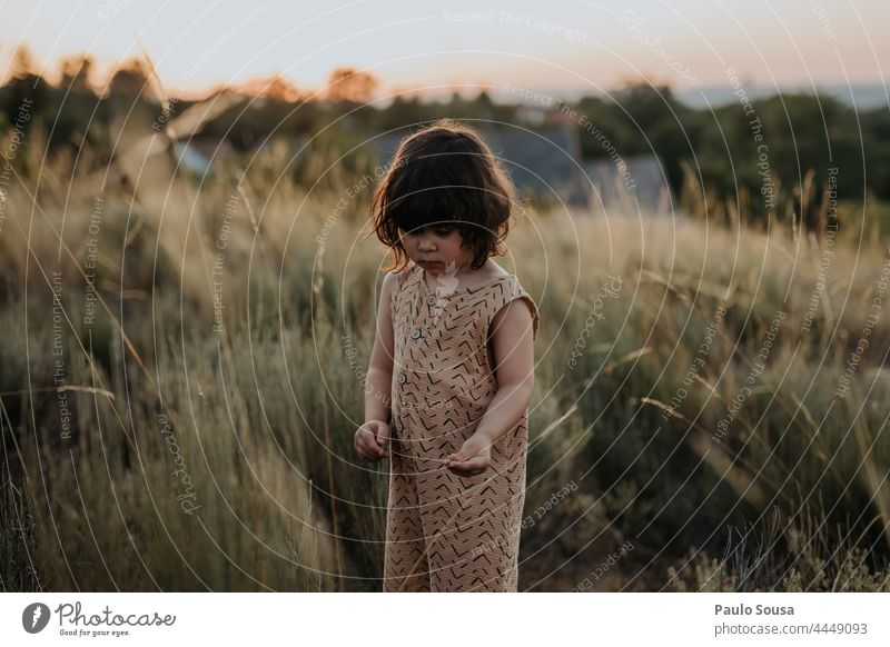 Cute girl standind in the fields Sunset Dusk Child childhood Girl 1 - 3 years Caucasian Happy Happiness Day Human being Infancy Exterior shot Joy Lifestyle