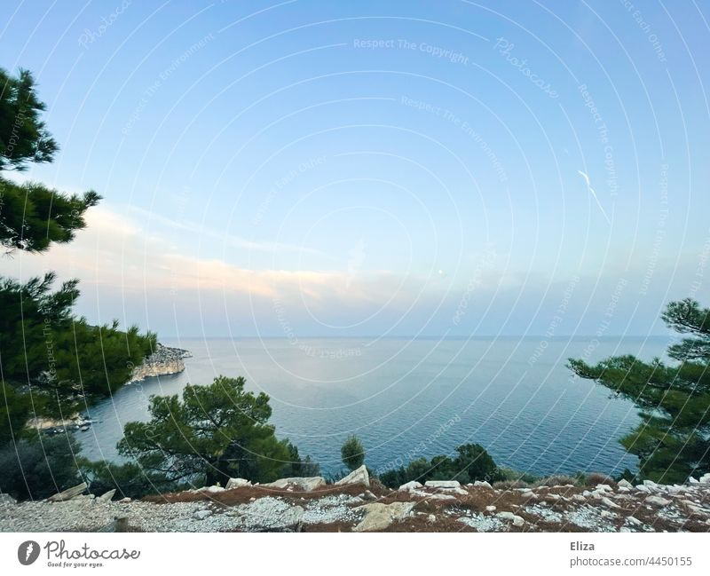 Coast, sea and clouds in the evening coast Ocean Clouds Evening Twilight Horizon Sky Landscape Nature Blue Water trees