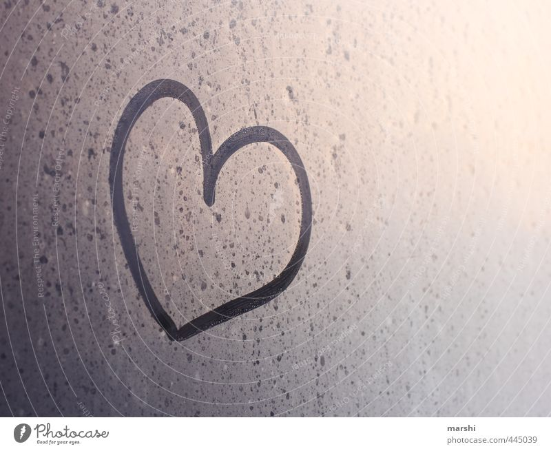 declaration of love Climate Weather Emotions Heart Sincere Love Declaration of love Symbols and metaphors Dew in the morning Colour photo Exterior shot