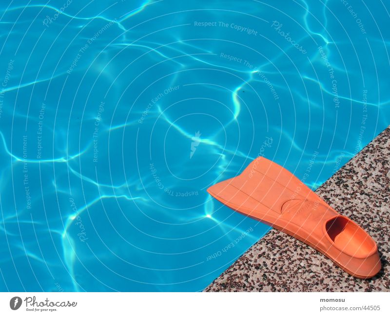 at the pool edge Swimming pool Summer Vacation & Travel Physics Wet Sports Water wings Warmth Swimming & Bathing