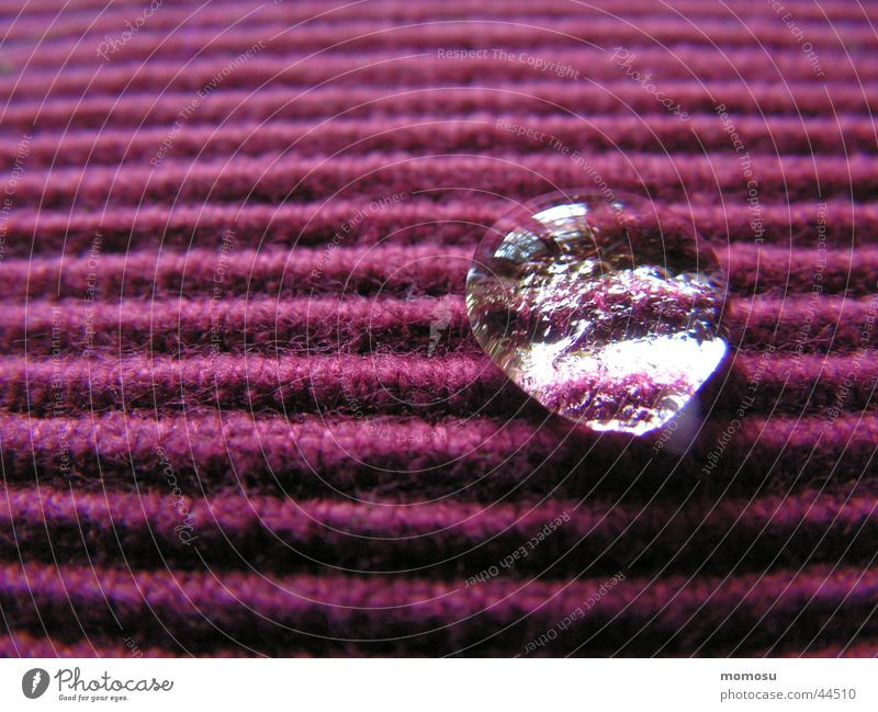 Water Drops of water Wet Living or residing Stripe Cloth Furrow