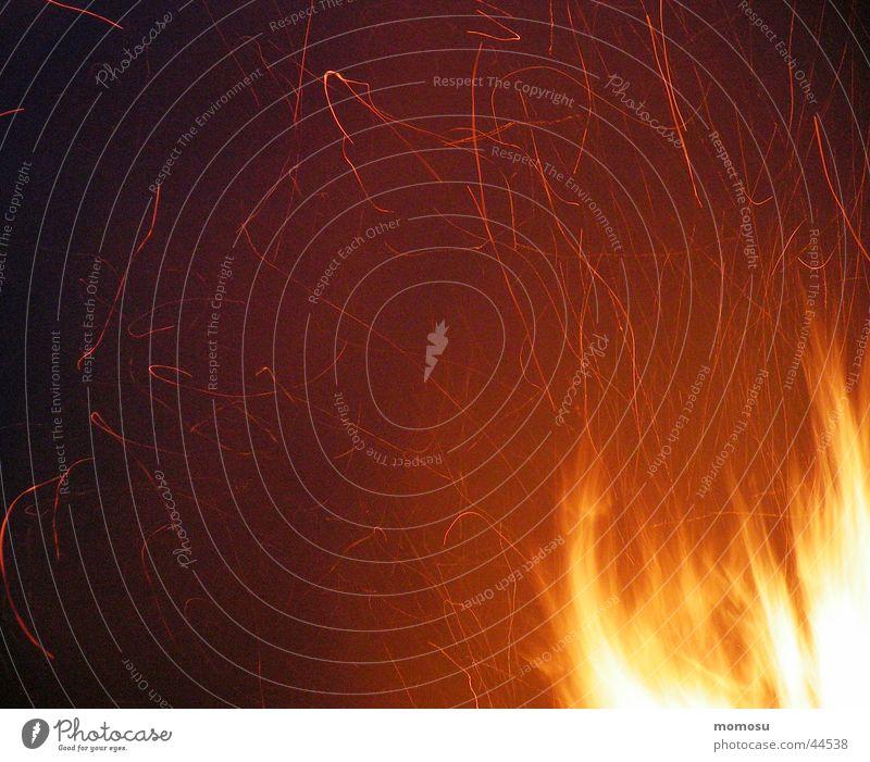 flying sparks Leisure and hobbies Spark Blaze Summer solstice solstice fire