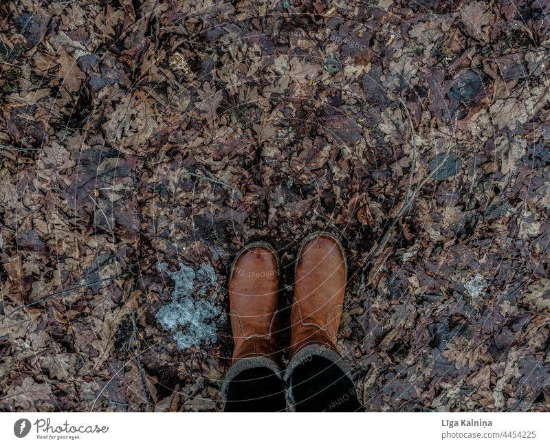 High angle view of boots and foliage, Autumn leaves Leaves Autumnal colours nature autumn Leaf autumn mood Autumnal weather Seasons autumn leaves Automn wood