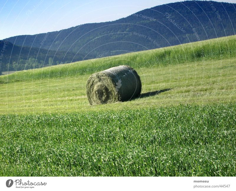 Green Meadow Mountain Field Hill Harvest Hay bale