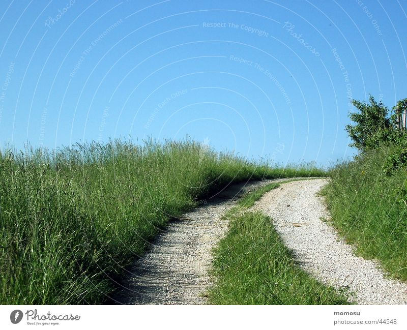 away to blue Meadow Grass Field Footpath Street Lanes & trails Sky Tracks