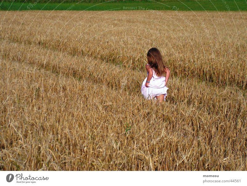 Child Summer Grass Hair and hairstyles Field Walking Dress Grain Escape