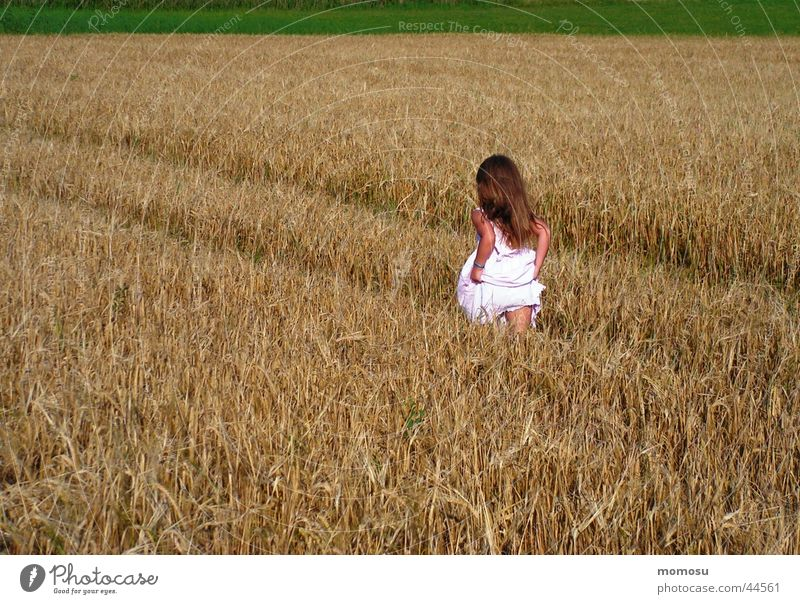 up and away Field Child Grass Dress Grain Hair and hairstyles Walking Escape Summer