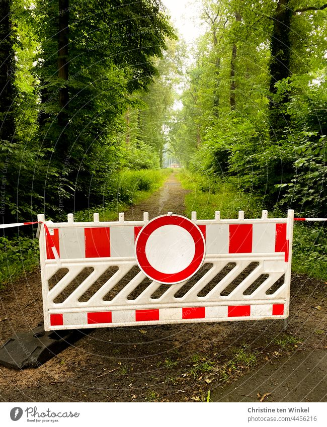 The footpath in the forest is closed off with a barrier and flutter tape. blocking forest path Promenade interdiction Lanes & trails Footpath Countdown marker