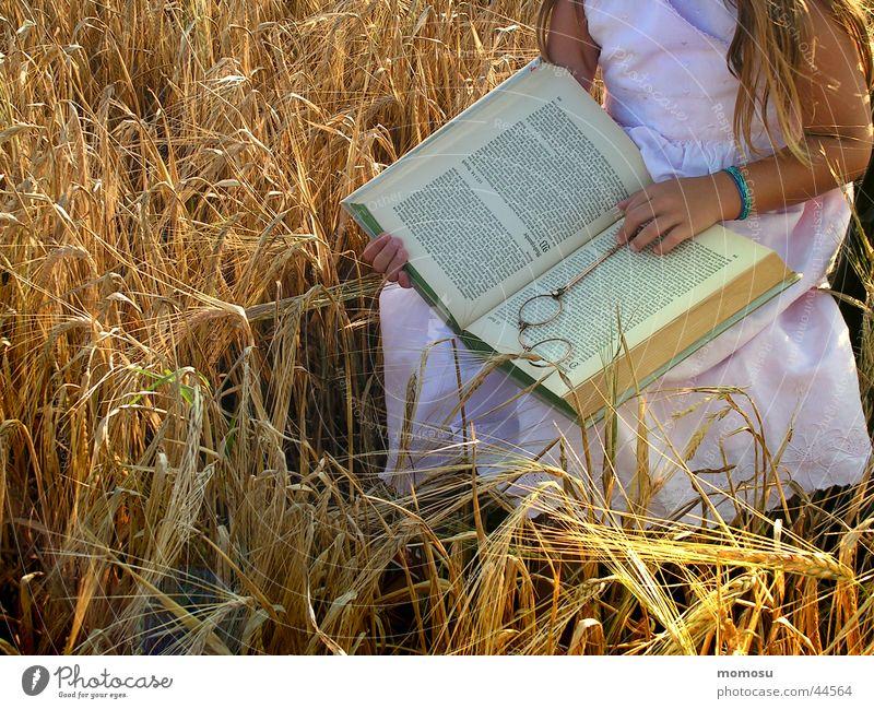 Child Hand Girl Field Sit Book Study Reading Grain Historic Education Media Lorgnon
