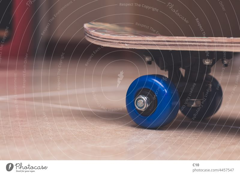 Side view of blue plastic wheels of a skateboard indoors activity adrenaline angle asphalt athletic background balance black carefree closeup culture detail
