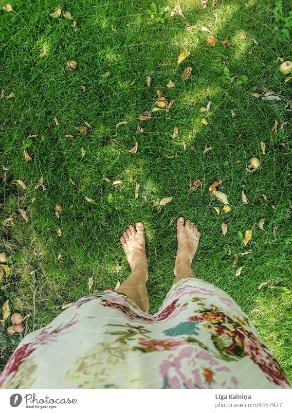 Barefeet woman standing in grass foot legs Barefoot Legs Toes Feet Relaxation Summer Woman Human being Vacation & Travel Grass Colour photo Dress