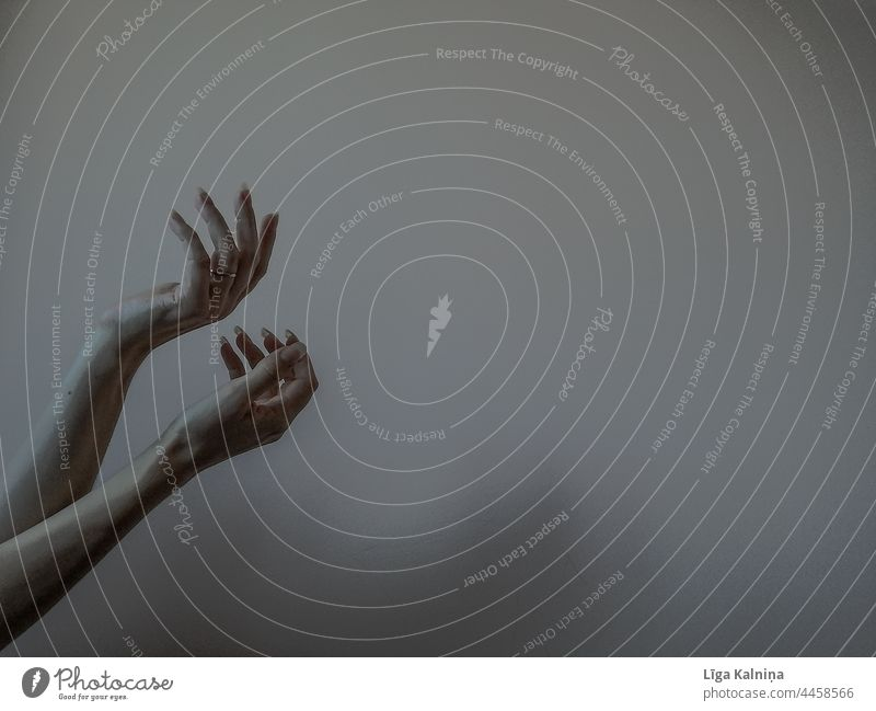 Two hands Hands Sense of Autumn Woman Fingers Arm Human being body part Mysterious Mystic Palm of the hand Minimalistic wrist Neutral Background Skin Gesture