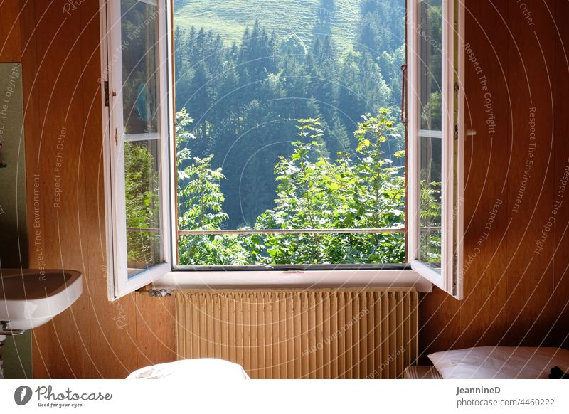 open window with view into the nature, inside with old-fashioned design Window House (Residential Structure) Depot View through the window