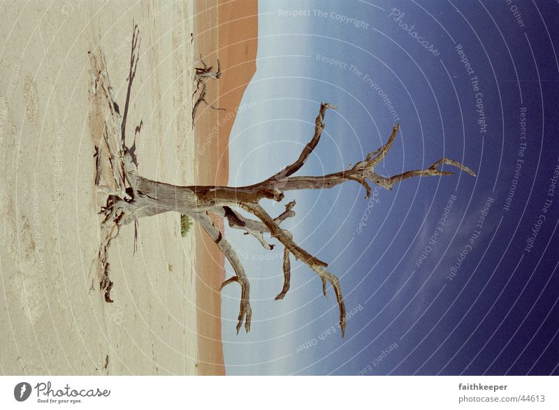 Africa Desert Namibia Namib desert Sossusvlei