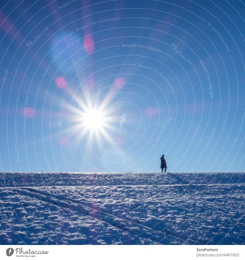 winter sun Winter Snow Human being Sun toboggan run Sunlight Blue Tracks Cold Sky Mountain Landscape Hill