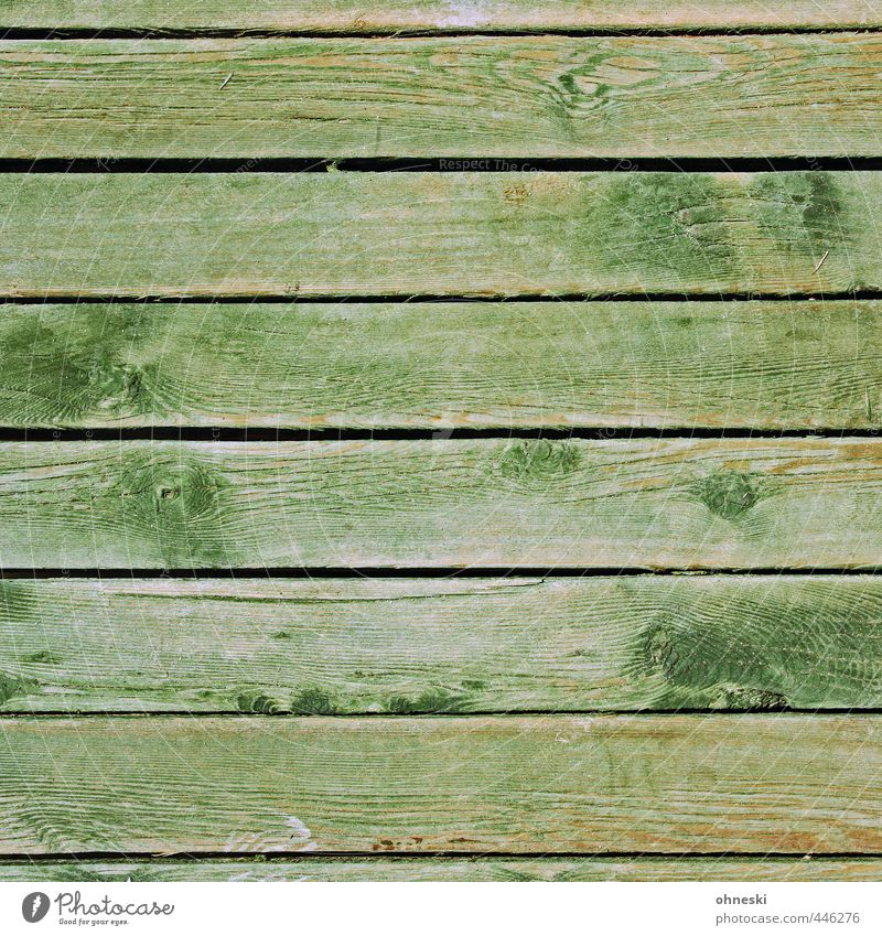 wood Facade Wooden board Green Wood grain Seam Line Colour photo Exterior shot Abstract Pattern Structures and shapes Copy Space top Copy Space bottom