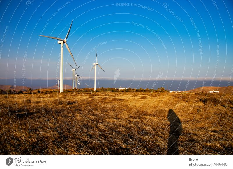 y in the isle of lanzarote spain africa Plate Vacation & Travel Renewable energy Wind energy plant Nature Plant Sky Clouds Gale Grass Hill Architecture Facade