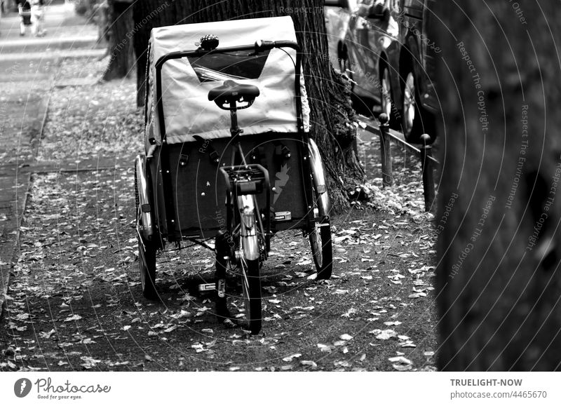 More space is needed for cargo bikes, rickshaws, child transport bikes, to ride and park on the side of the road. load wheel Bicycle Rickshaw Child carrier