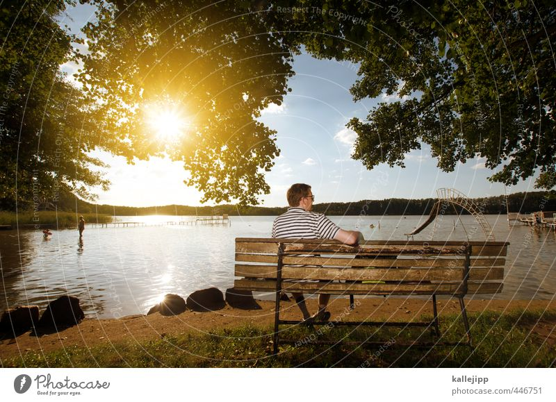 Human being Nature Man Vacation & Travel Water Summer Sun Tree Calm Landscape Leaf Adults Environment Meadow Lake Horizon